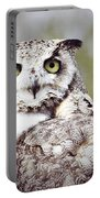 Followed Owl Portable Battery Charger
