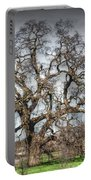 Folsom Oak Tree Portable Battery Charger