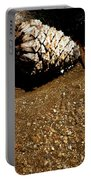 Fools Gold And Pine Cone Portable Battery Charger