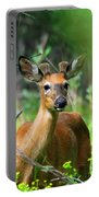 Forest Buck Portable Battery Charger
