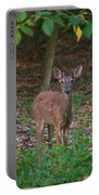 Forest Edge 7365 1754 Portable Battery Charger