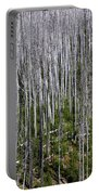 Forest Fire Sticks-2 Portable Battery Charger