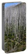 Forest Fire Sticks-3 Portable Battery Charger