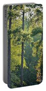 Forest Illumination At Sunset Portable Battery Charger