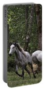 Forest Mares Portable Battery Charger