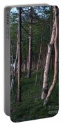 Forest, Shore Of Lake Superior Portable Battery Charger