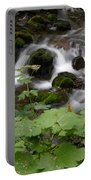 Forest Stream Portable Battery Charger