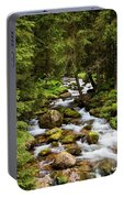 Forest Stream In Tatra Mountains Portable Battery Charger