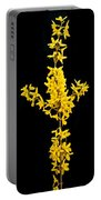 Forsythia Panorama 4426 Portable Battery Charger