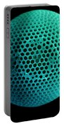 Fossil Diatom, Sem Portable Battery Charger