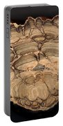 Fossil Stromatolite Portable Battery Charger