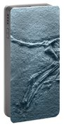 Fossils - Pterosaurs Portable Battery Charger