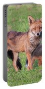 Fox And Baby Portable Battery Charger
