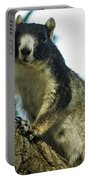 Fox Squirrel Portable Battery Charger by Phill Doherty