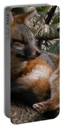 Foxy's Naptime Portable Battery Charger