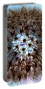 Fractal Seed Portable Battery Charger