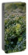 Fresh Broccoli Portable Battery Charger by Susan Herber