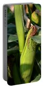 Fresh Corn On The Cob Portable Battery Charger