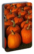 Fresh From The Farm Orange Pumpkins Portable Battery Charger