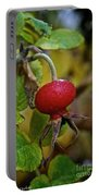 Fresh Rose Hip Portable Battery Charger