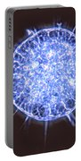 Freshwater Heliozoan Portable Battery Charger