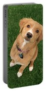 Friendly Dog Portable Battery Charger
