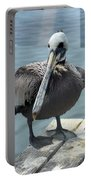 Friendly Pelican Portable Battery Charger