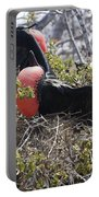 Frigatebird Attracting Female Portable Battery Charger