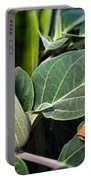 Frog And Moonflower Portable Battery Charger