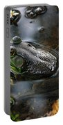 Frog In The Millpond Portable Battery Charger