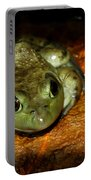 Frog Love Portable Battery Charger