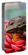 Frog On Lily Pad Two Portable Battery Charger