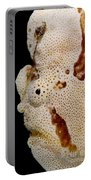 Frogfish Face Portable Battery Charger