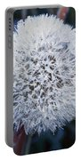 Frost On Mature Dandelion Blossom Portable Battery Charger