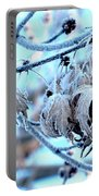Frozen IIi Portable Battery Charger