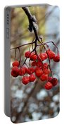 Frozen Mountain Ash Berries Portable Battery Charger