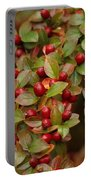 Fruits Of The Season Portable Battery Charger