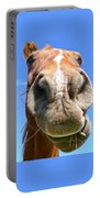 Funny Brown Horse Face Portable Battery Charger by Jennie Marie Schell