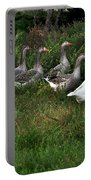 Gaggle Of Geese Portable Battery Charger