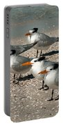 Gaggle Of Gulls Portable Battery Charger