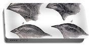 Galapagos Finches Portable Battery Charger