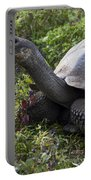 Galapagos Tortoise Inching Along Portable Battery Charger