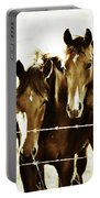 Galloping Brothers  Portable Battery Charger