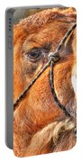Gangsta Grillin This Camels Chillin Portable Battery Charger