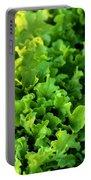 Garden Fresh Salad Bowl Lettuce Portable Battery Charger