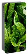 Garden Fresh Portable Battery Charger by Susan Herber