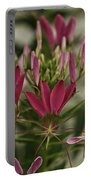 Garden Stinkweed Flower 1 Portable Battery Charger