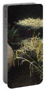 Garden Urns In A Garden Portable Battery Charger