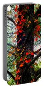 Garland Of Autumn Portable Battery Charger