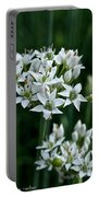 Garlic Chive Blooms Portable Battery Charger